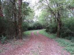 Dirt Road Leading to the Trail of Tears segment at Old Jefferson