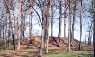 Shiloh Mound
